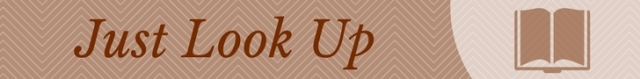 Just Look Up banner