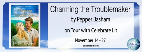 14 Nov charming-the-troublemaker-copy