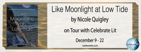 9 Dec like-moonlight-at-low-tide-FB-cover-copy