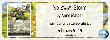 6 Feb No-Small-Storm-FB-Banner-copy-2