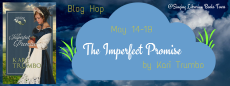 14 May an-imperfect-promise-blog-hop-banner-1_orig