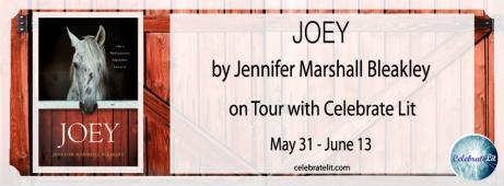 31 May Joey