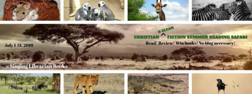 Christian Fiction Reading Safari