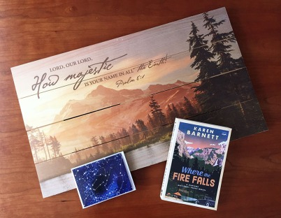 Where the Fire Falls giveaway